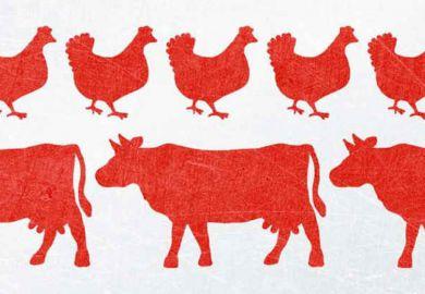 Review: Chickenizing Farms & Food, by Ellen K. Silbergeld