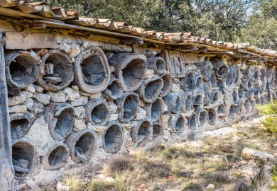 Solarana, Burgos, Spain - November 28, 2015 old bee hive construction in a holm oak forest in rural Castile for apiculture. The derelict hives held the honeycomb to be harvested for honey and wax.