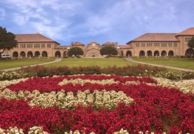 Stanford quadrangle with roses