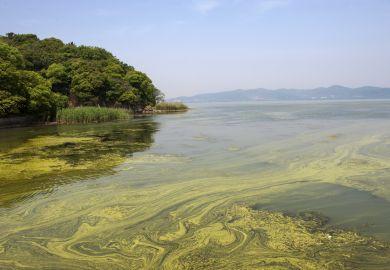 Pollution in Tai Lake near Shanghai