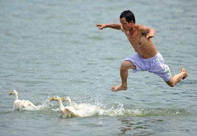 A man jumps into a river to catch ducks during a duck-catching competition, China