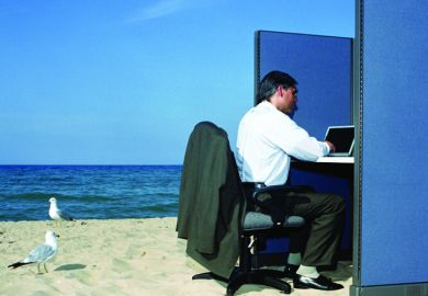 Businessman working in office cubicle at beach