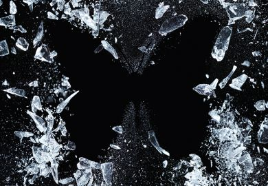 ice butterfly