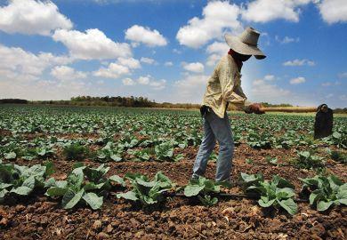 Migrant farm workers in Israel