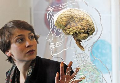 woman looking at a real human brain being displayed