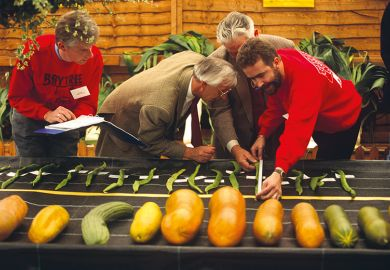 measuring vegetables