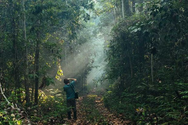 forest-photographer