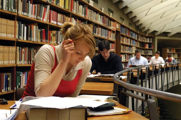 Public Policy what subjects can you study in college