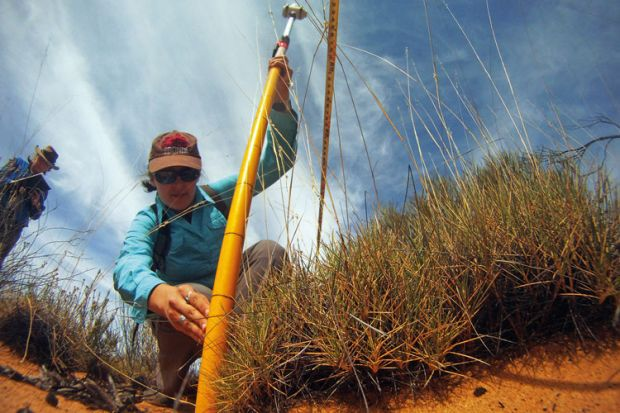 A female ecologist taking measurements in the Outback