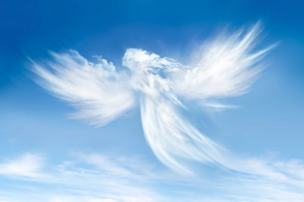 academic media angels can wing it to 24 7th heaven the opinion