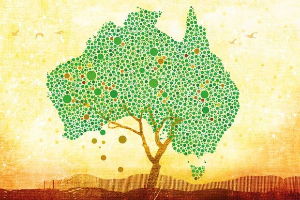 australia-tree