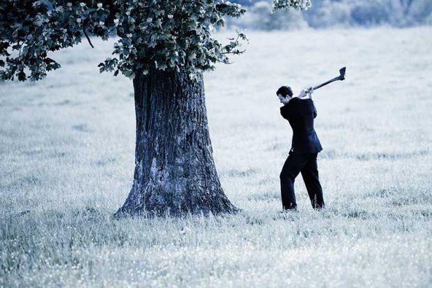 axe-tree-chop