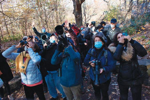 Birdwatchers illustrating community-led research