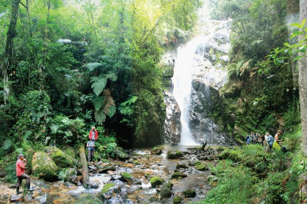 Conservationists working near waterfall