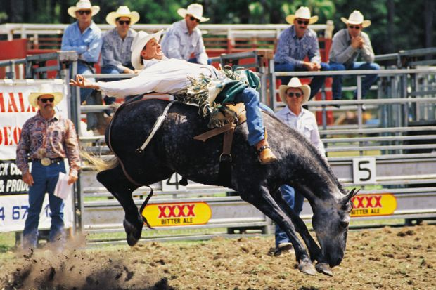 Cowboy riding horse during rodeo, Queensland, Australia
