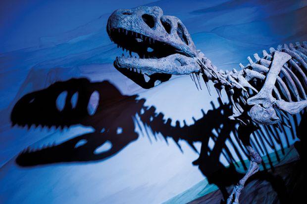 dinosaur-skeleton