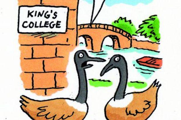 cartoon geese