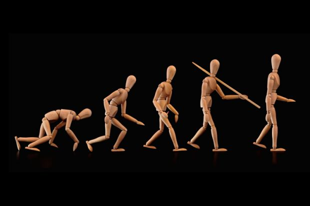 Evolution of humans (wood figurines)