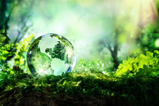 Glass globe lying on forest floor