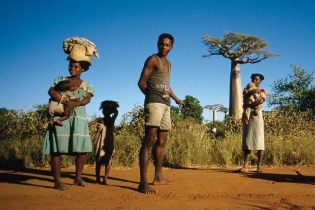 скачать через торрент игру Madagascar - фото 6