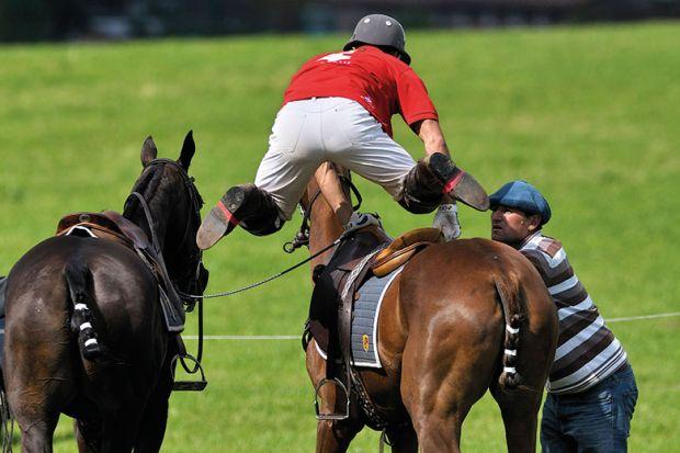 horse-jockey-jump