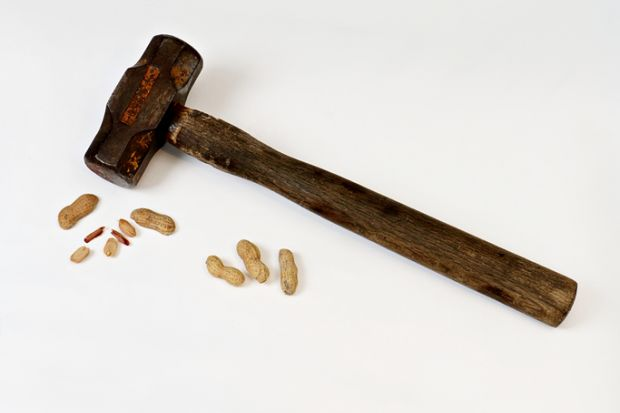 Hammer and cracked nut