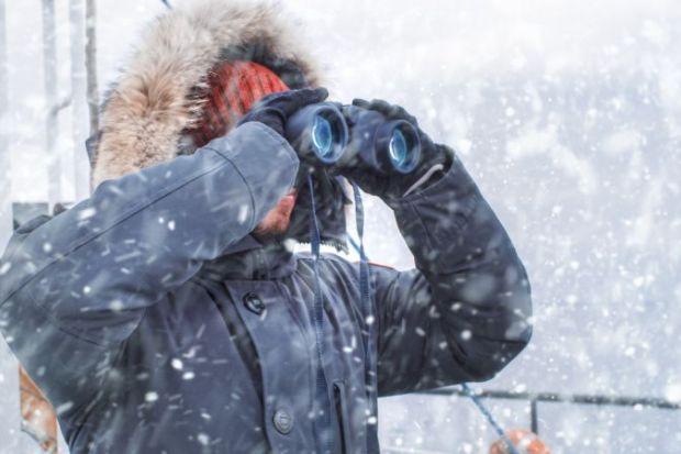 Arctic researcher