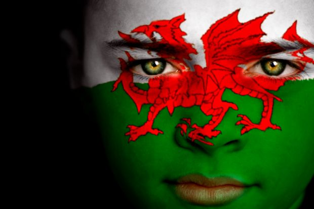 Boy with Welsh flag