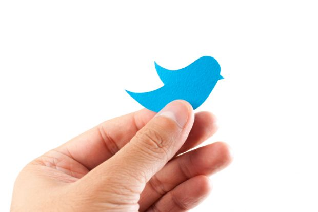 Hand holding blue paper bird in style of Twitter logo