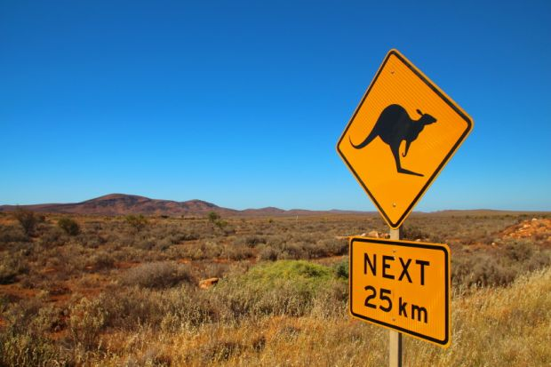 Kangeroo road sign in Australia