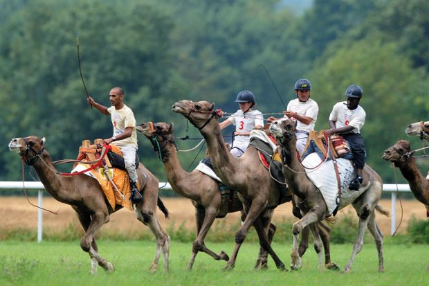 Jockeys riding camels, French Cup of camel races, 2014