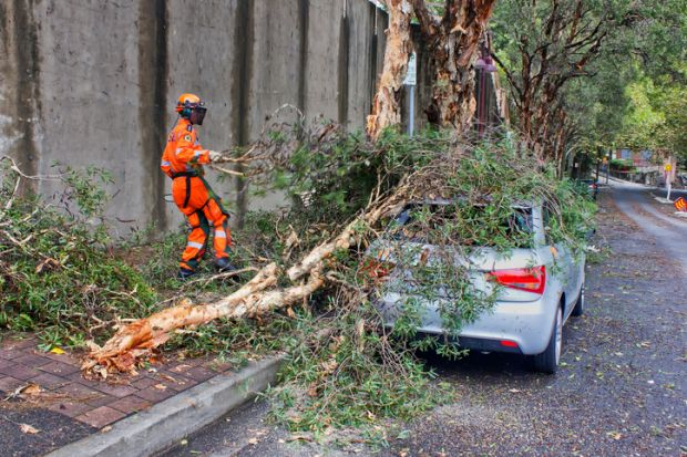 Kirribilli, Australia - February 24, 2013 an SES volunteer clears fallen branches from a car in Kirribilli, Australia on February 24, 2013. A mini-tornado swept through during the previous night, uprooting trees and ripping off roofs.