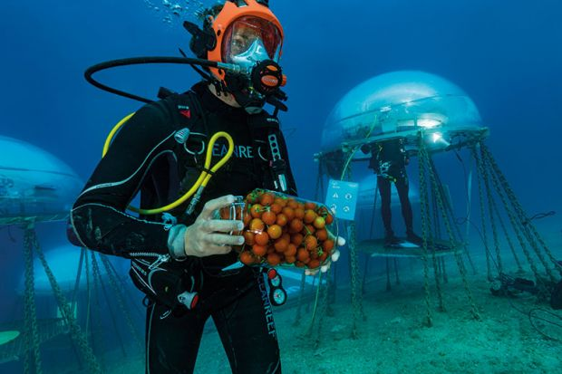 Underwater food production