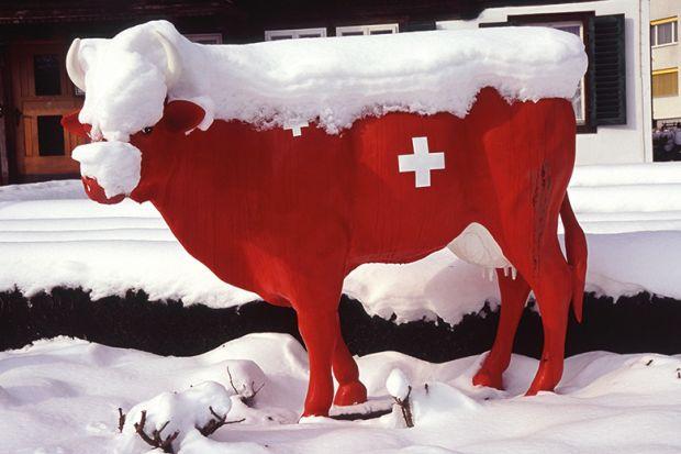 Model of a Swiss cow