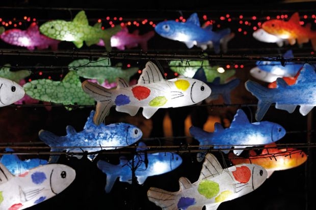Multi-coloured fish lanterns hanging on wire