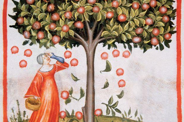 Image from Tacuinum Sanitatis, Medieval Health Handbook, dated before 1400