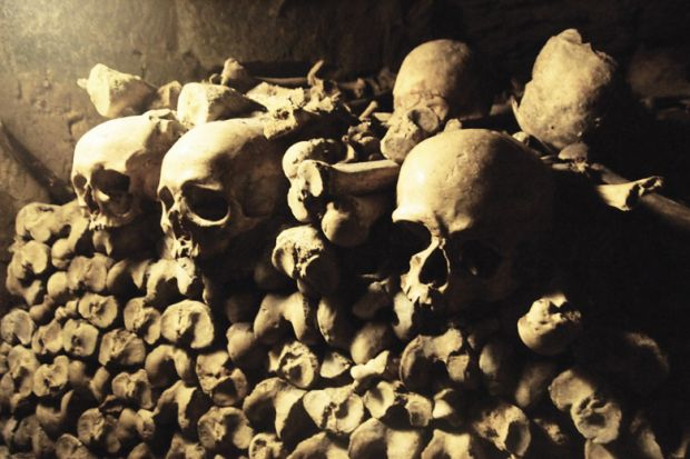 Pile of skulls and bones in French catacombs