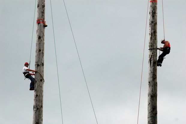Pole climbing competition, Royal Welsh Show