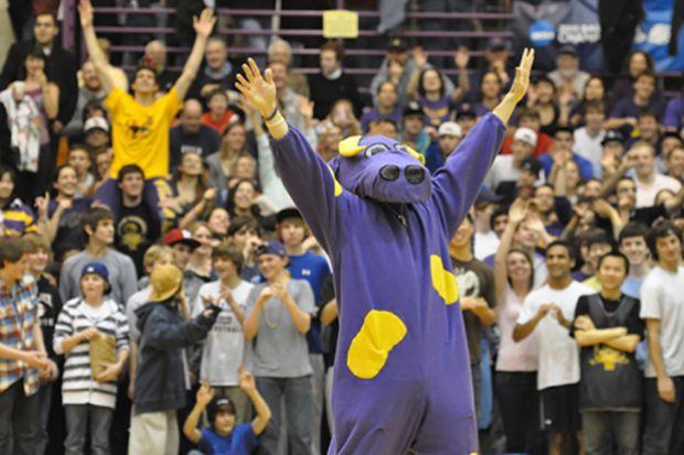 Weirdest US College mascots