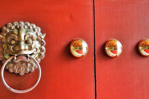 Red door Lion Decoration