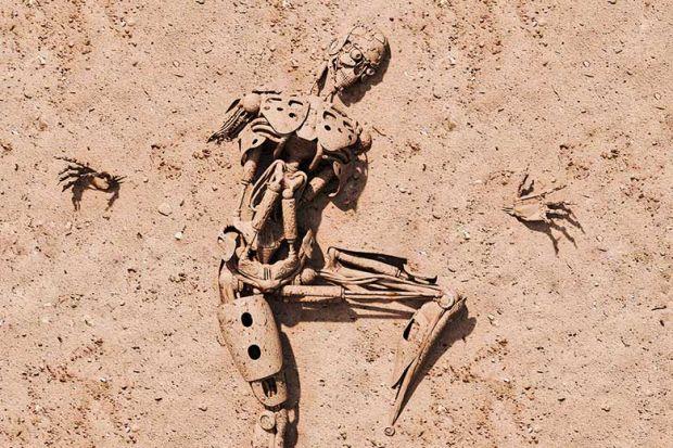 robot-skeleton