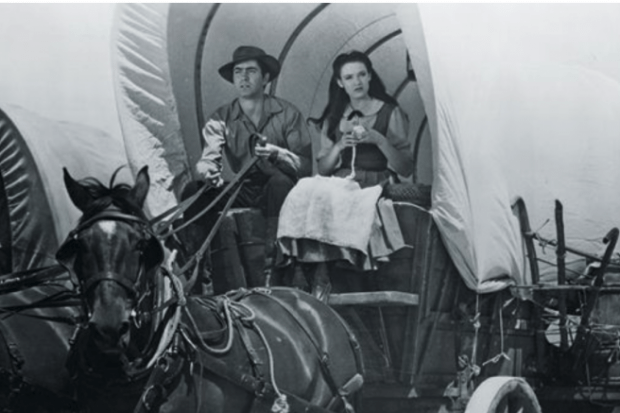 Couple in horse-drawn wagon crop