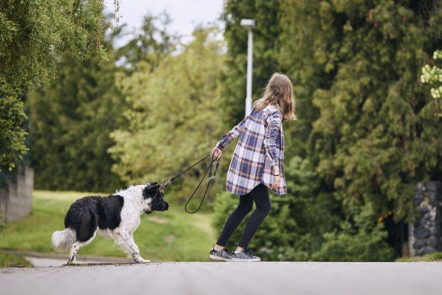 Teenage girl pulling stubborn dog
