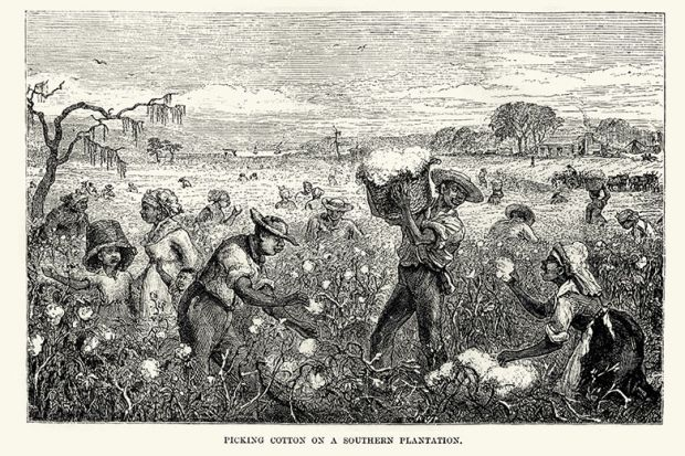 Drawing of cotton pickers on a plantation