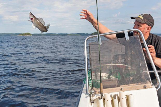 Man throwing fish back
