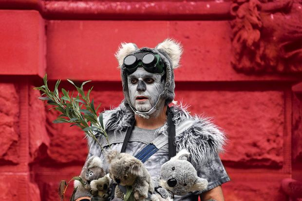 """A demonstrator dressed as a """"homeless koala"""" attends a climate protest rally in Sydney on December 11, 2019"""