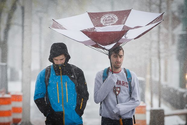 Harvard University students walk under a damaged umbrella near Harvard Square in Cambridge, MA in April