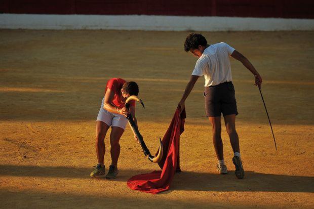 Training matador