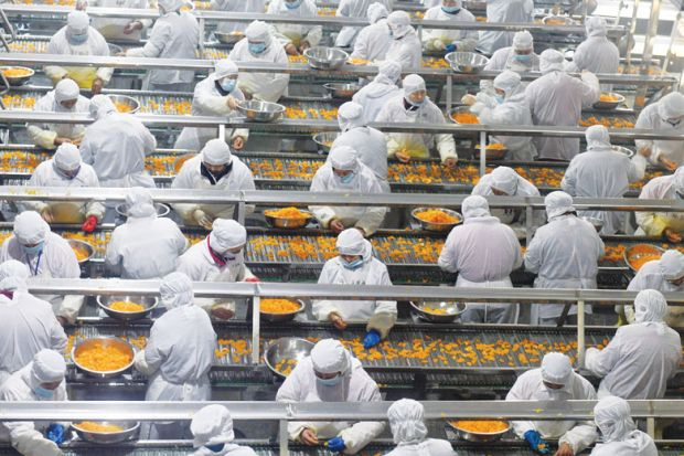 food factory overhead shot multiple lines of people with carrots on conveyor belts to describe the global geography of the food industry.