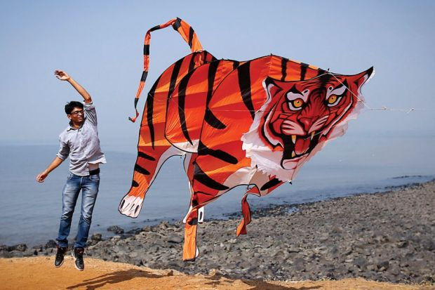 A participant flies a tiger shaped kite during the International Kite Festival in Mumbai